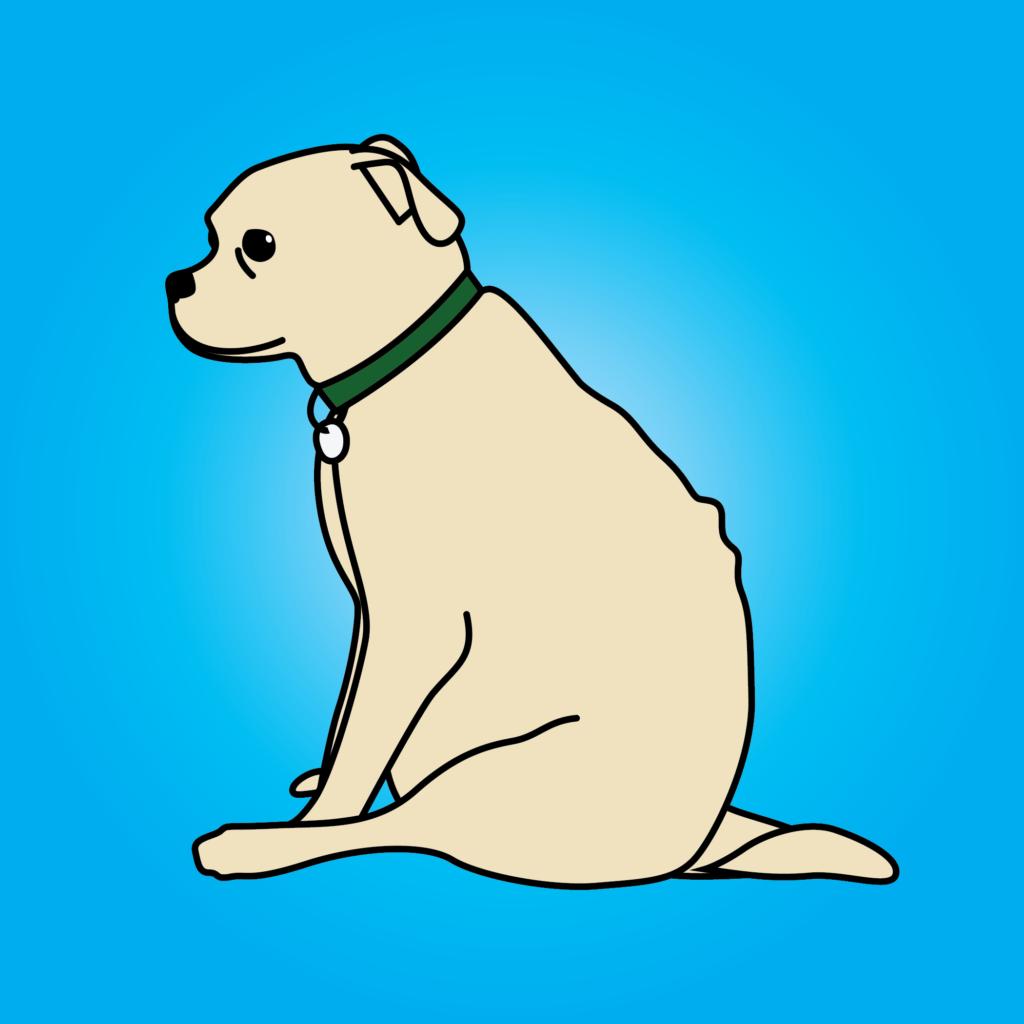 Chubs-Illustration